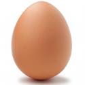 Eier perfekt kochen - IPhone App